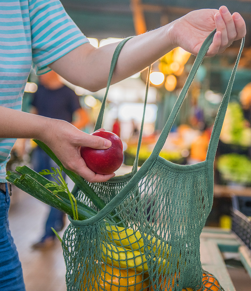 bagisiklik-sistemimizi-guclendiren-besinler